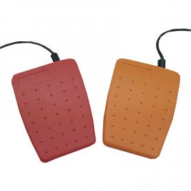 6227 / Interruptor de pedal: Pedal simple ligero de uso general (Clasificación IPX2)